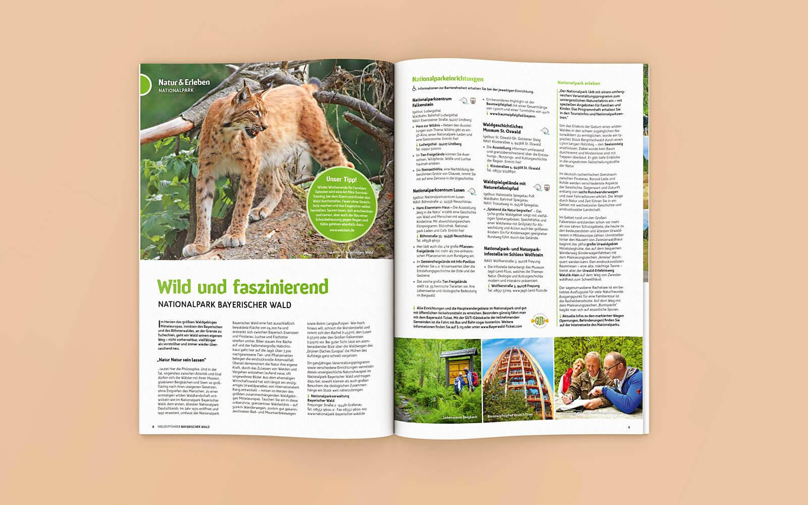 Freizeitführer Bayerischer Wald – Natur und Erleben