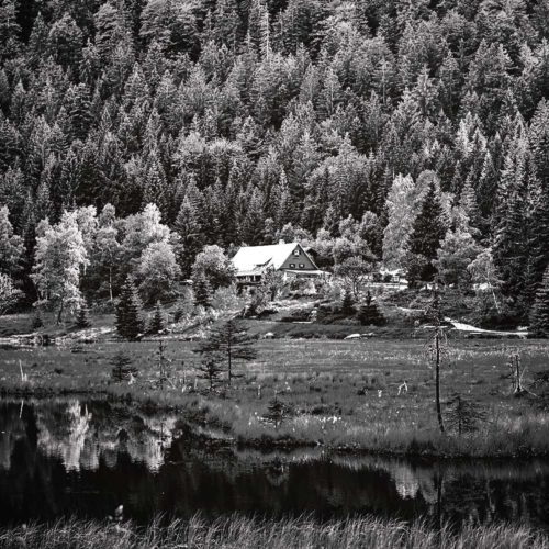 teamElgato Portfolio – Bayerischer Wald Titelbild