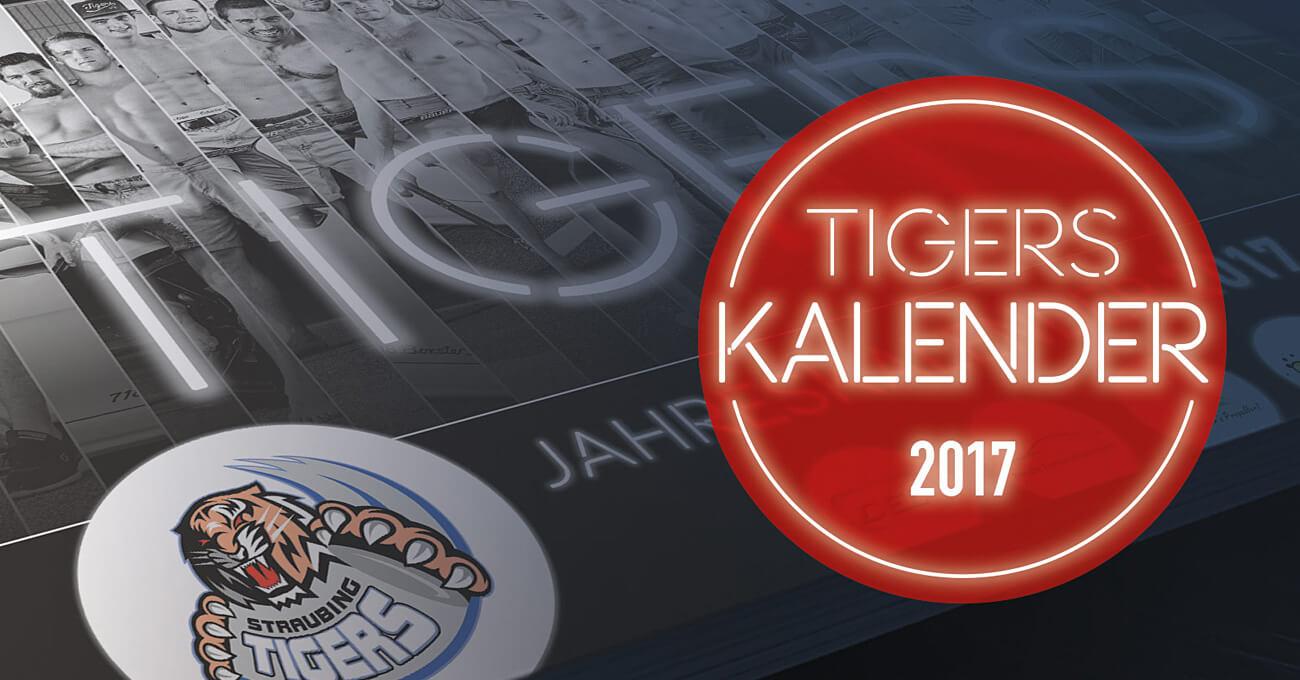 teamElgato News – Straubing Tigers Spielerkalender 2017