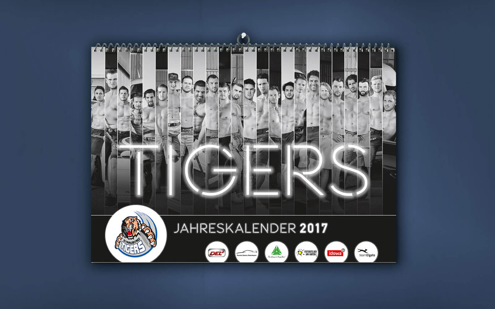 Straubing Tigers – Spielerkalender 2017 Cover