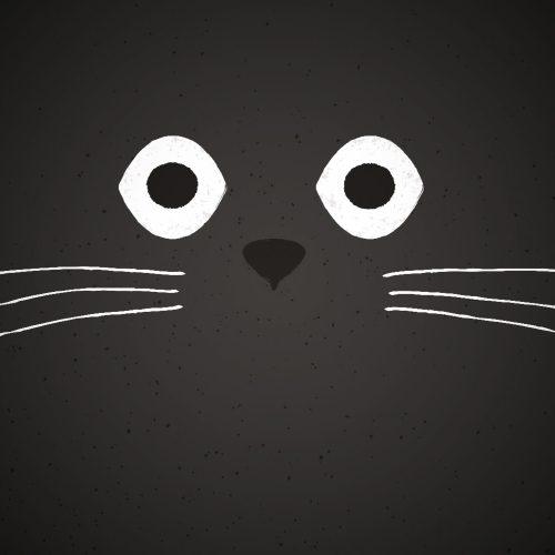 teamElgato Portfolio – Kitty Kards Titelbild